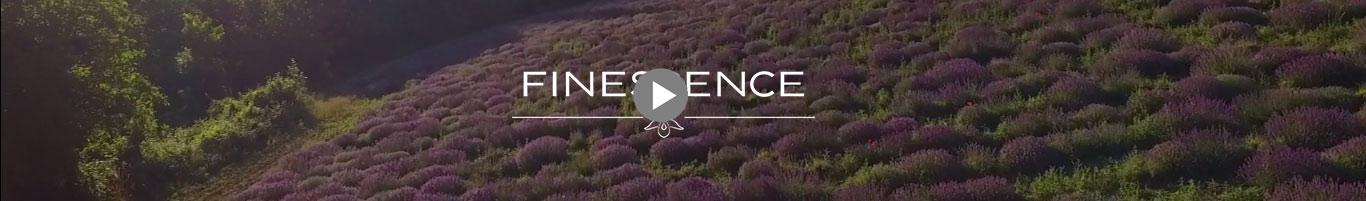 Vidéo Finessence