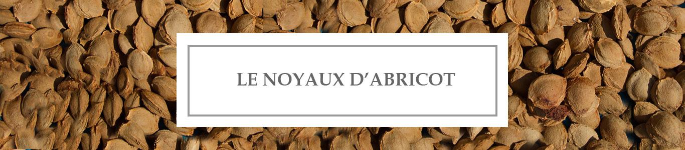 Huile de Beauté Noyaux d'Abricot
